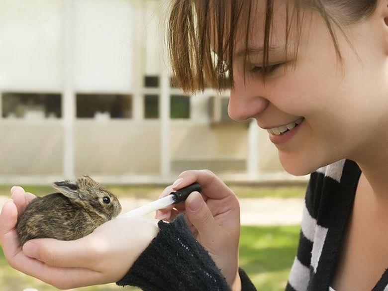 wildlife technology student